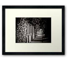 Uncommon Perspective  Framed Print