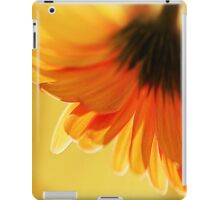 Evening Sun iPad Case/Skin