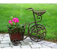 Old Fashioned Bicycle And Flowers Photographic Print