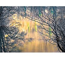 Reflection on Mreznica River Photographic Print