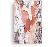 Abstract 3 Canvas Print