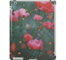 Faery Lanterns iPad Case/Skin