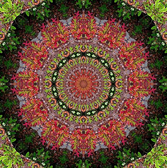 Virgo Mandala by JenLand
