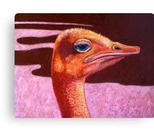 Orange Ostrich Canvas Print