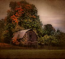 Changing Seasons by Shelly Harris