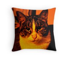 Zoe Throw Pillow