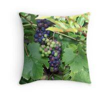 The Grape Vine Throw Pillow
