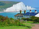 Spot The Seagull - The Seven Sisters by Colin  Williams Photography