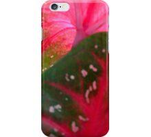 Caladium Series - Two  ^ iPhone Case/Skin