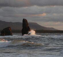Sunset On Cabot Trail  by DigitallyStill
