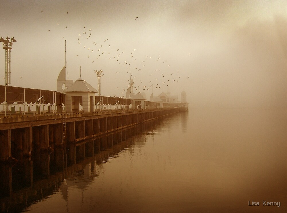 the birds and the pier by Lisa  Kenny