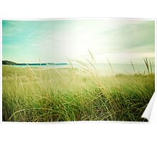 Autumn Evening at the Beach Poster