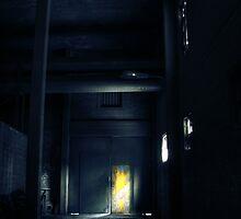 2.10.2010: Colour in the Dark by Petri Volanen