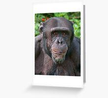Old Chimp Portrait Greeting Card