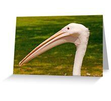 Pelican Head Greeting Card