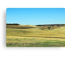 Early Morning Wheat Field Canvas Print