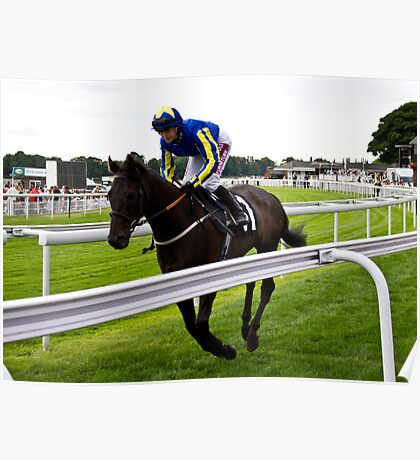 Race Horse at York Races Poster