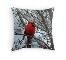 Cardinal in Winter Throw Pillow