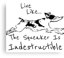 Live Like The Squeaker Is Indestructible Canvas Print