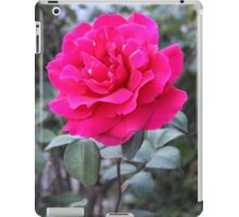Stand-Up Red Rose iPad Case/Skin