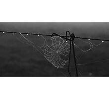 Web Designer Photographic Print