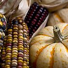 Textures of Fall by Sue  Cullumber