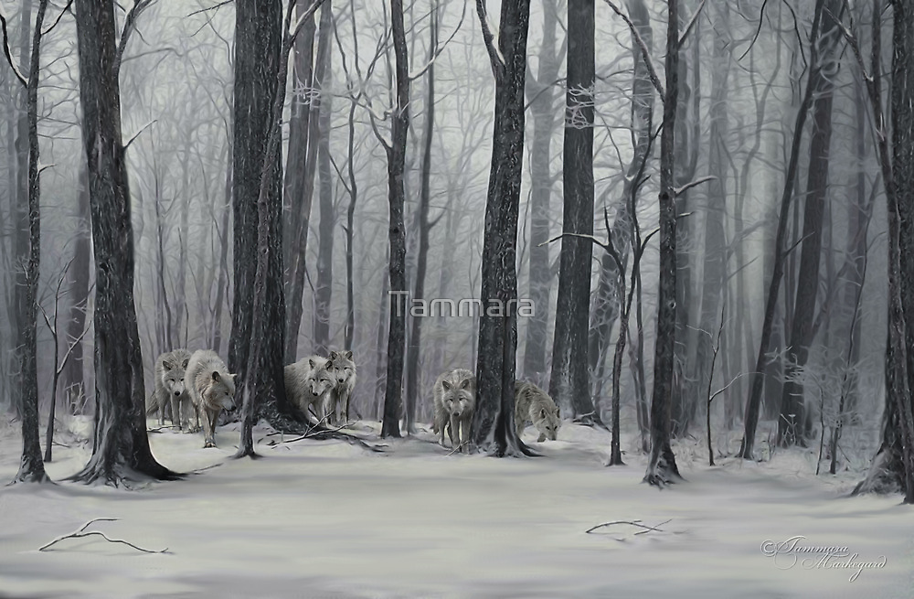 Ghostly Revelation by Tammara