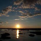 Marsh Sunset by Susan Carter