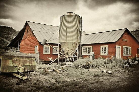 The Mooney Dairy Farm by Brandon Taylor
