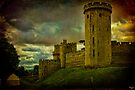 Castle Warwick, Warwickshire, England by Chris Lord