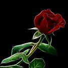 September's Rose by Sandy Keeton