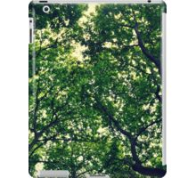 In The Woods Light Through leaves iPad Case/Skin