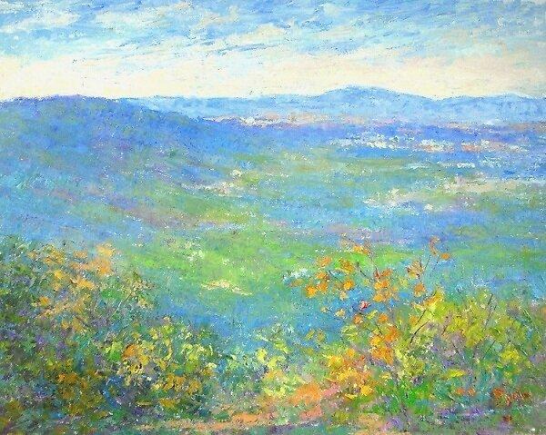 Blue Ridge mountains by Julia Lesnichy