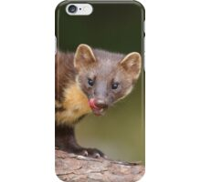 Cheeky pine marten  iPhone Case/Skin