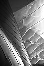 Reflectivity by Kevin Bergen