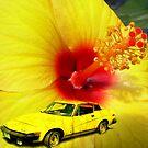 Pretty in Yellow.......... by Larry Llewellyn