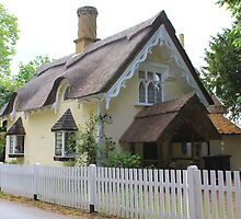 Thatched Cottage. Old Warden, U.K. by Martin  Brinsley