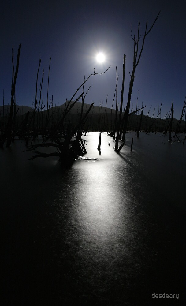 Dead tree lake at full moon by desdeary