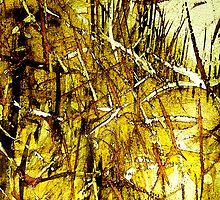 dried golden grass.....city fields by banrai