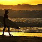 Surfer Boy by Ronnie O'Rourke