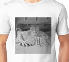 The Fremont Troll & his dinner  Unisex T-Shirt