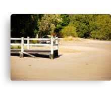 Tide's Out Canvas Print