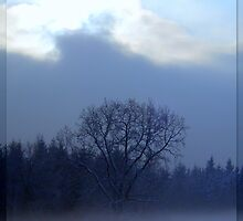"""Misty Blue featured in """"Inspired Art"""" by ©The Creative  Minds"""