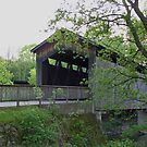 A covered bridge in Michigan  by Cody  VanDyke