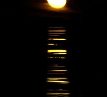 Stairway to the moon, Port Hedland by Julia Harwood