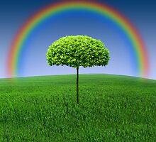 Evergreen Topiary tree with Rainbow over by Atanas Bozhikov Nasko