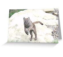 Viktoria - Puma at Wildlife Heritage Foundation in Kent Greeting Card