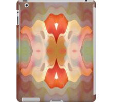 Kaleidoscope 11 iPad Case/Skin