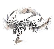Harry Potter Thestral (Flying) Photographic Print