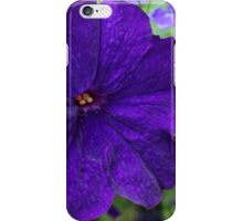 Indigo Petunia iPhone Case/Skin